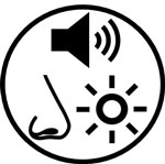 environmental stressors icon